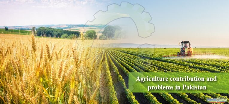 The agricultural sector of Pakistan is the backbone of our economy